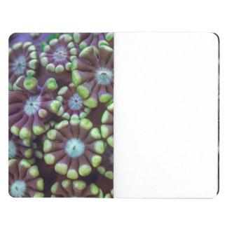 Fluorescent corals journal