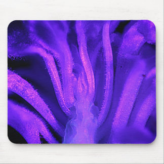 Fluorescent Flower Mouse Pad