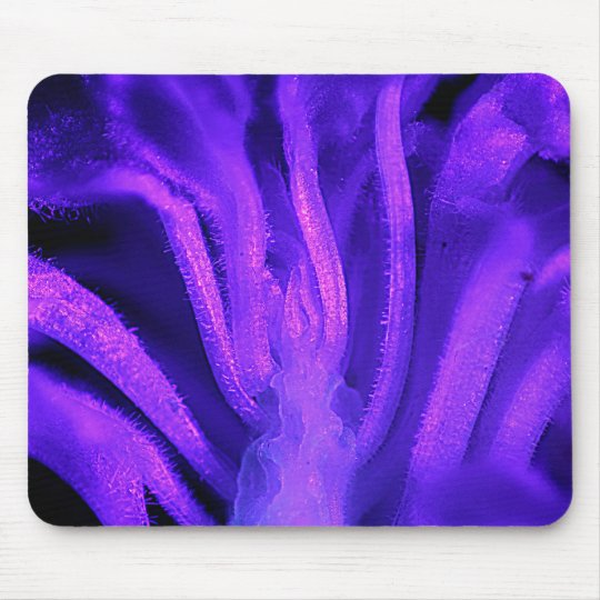 Fluorescent Flower Mouse Pad