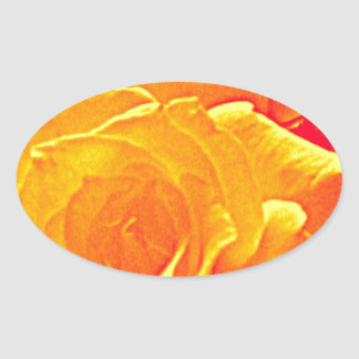 fluorescent rose orange oval sticker