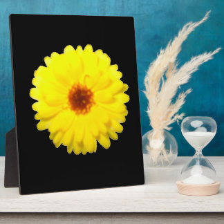 Fluorescent Yellow Marigold Plaque