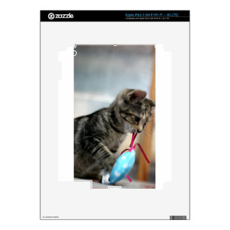 Flurry with Mouse iPad 3 Skin