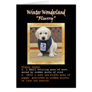 Flurry's Name Card