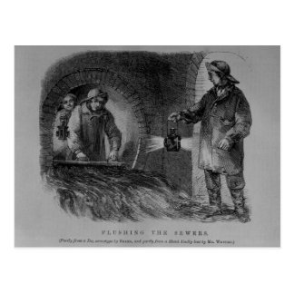 Flushing the Sewers Postcard