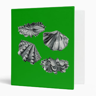 Fluted Giant Clam 3 Ring Binder