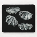 Fluted Giant Clam Mousepads