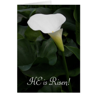 Fluted Lily Religious Easter Card