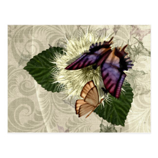 Flutter Magic Postcard