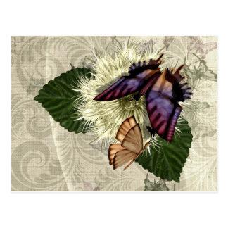 Flutter Magic Postcard