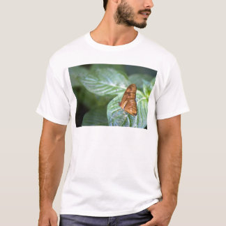 Flutter On By T-Shirt