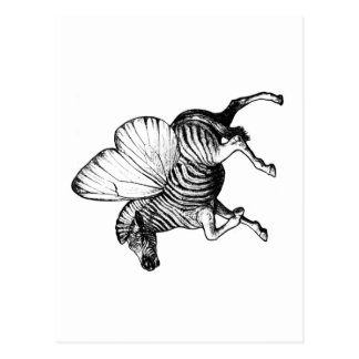 Flutter Zebra Postcard