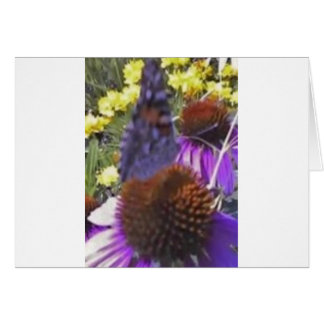 Flutterby notecard greeting card