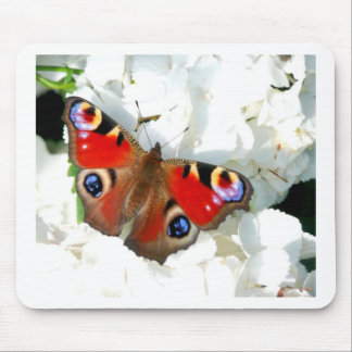 Fluttering Colorful Butterfly Design Mouse Pad