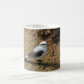 Fluvicola-nengeta Coffee Mug