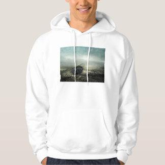 Fly 2013 hoodie