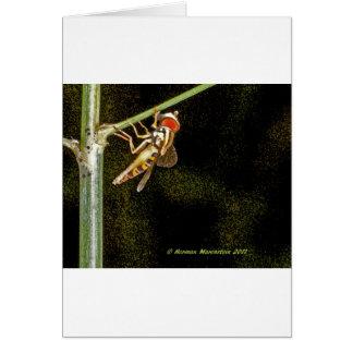 fly a card