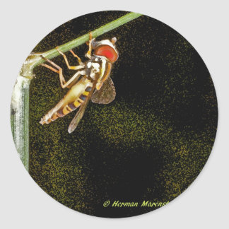 fly a classic round sticker