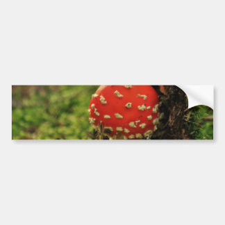 Fly Agaric Bumper Stickers