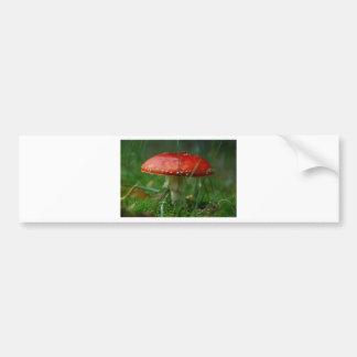 Fly agaric bumper sticker