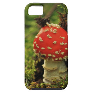 Fly Agaric Case For iPhone 5/5S