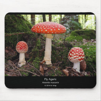 Fly agaric mouse pad