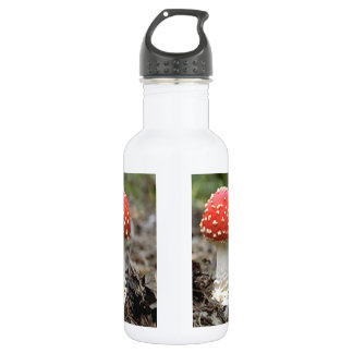 Fly agaric mushroom 18oz water bottle