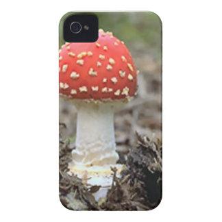 Fly agaric mushroom iPhone 4 cases