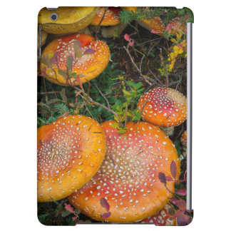 Fly agaric mushrooms at Mowich Lake iPad Air Case