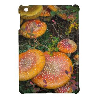 Fly agaric mushrooms at Mowich Lake iPad Mini Case