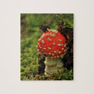 Fly Agaric Puzzle