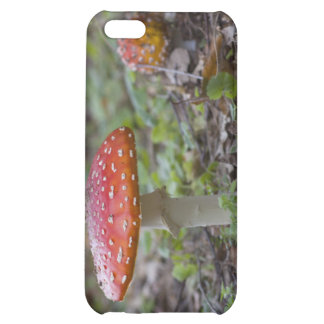 Fly Agaric Toadstool iPhone 5C Cover