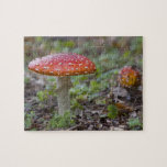 Fly Agaric Toadstool Puzzles