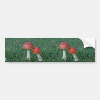 Fly agarics (Amanita muscaria) Bumper Stickers