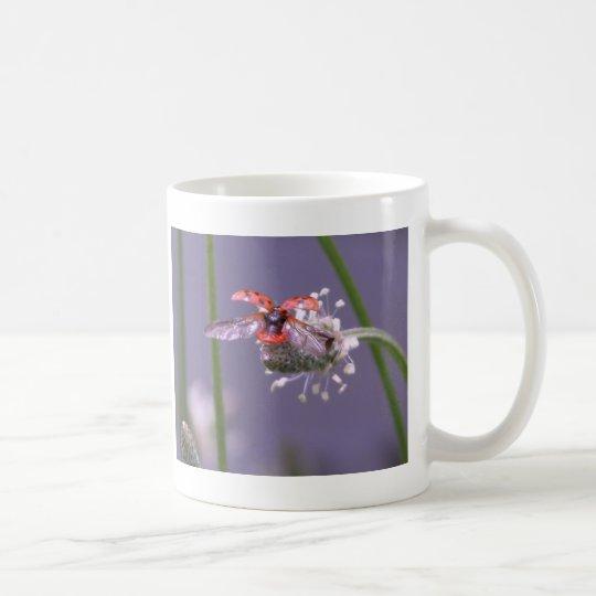 Fly away home coffee mug