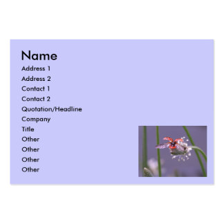 Fly away home, Name, Address 1, Address 2, Cont... Large Business Card