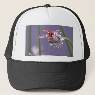 Fly away home trucker hat