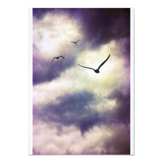 Fly Away Invitations