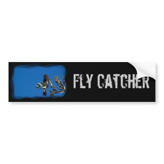 Fly Catcher Bumper Stickers