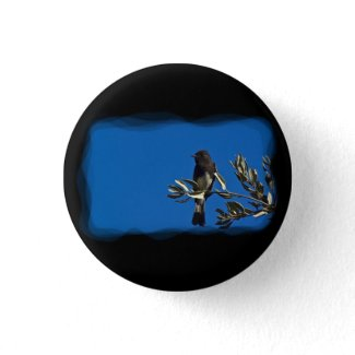 Fly Catcher Buttons