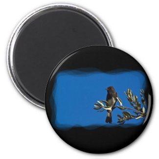 Fly Catcher Fridge Magnet