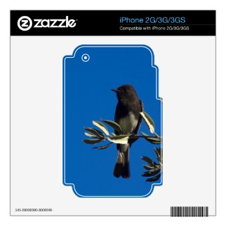 Fly Catcher Iphone 2g Skin