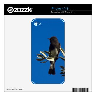 Fly Catcher Iphone 4s Decals