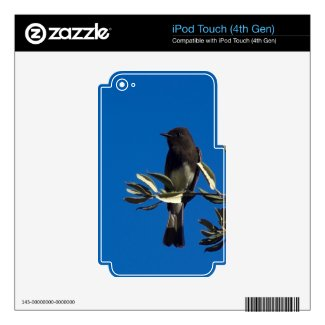 Fly Catcher Ipod Touch 4g Skins