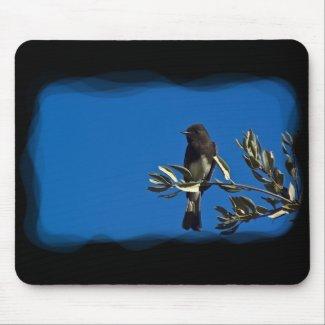 Fly Catcher Mousepads