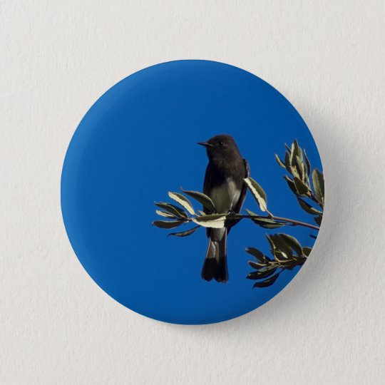 Fly Catcher Pinback Button