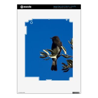 Fly Catcher Skins For Ipad 3