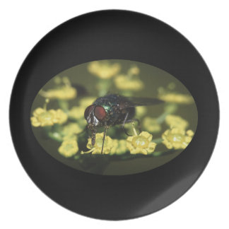 Fly Covered in Pollen Dinner Plate