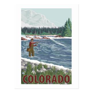 Fly FishermanColorado Postcard