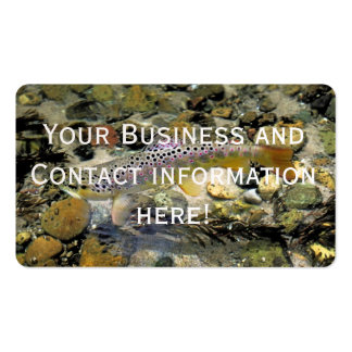 Fly Fishing Business Card