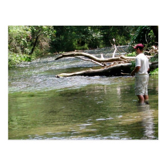Fly Fishing in Dry Run Creek, Arkansas Post Cards